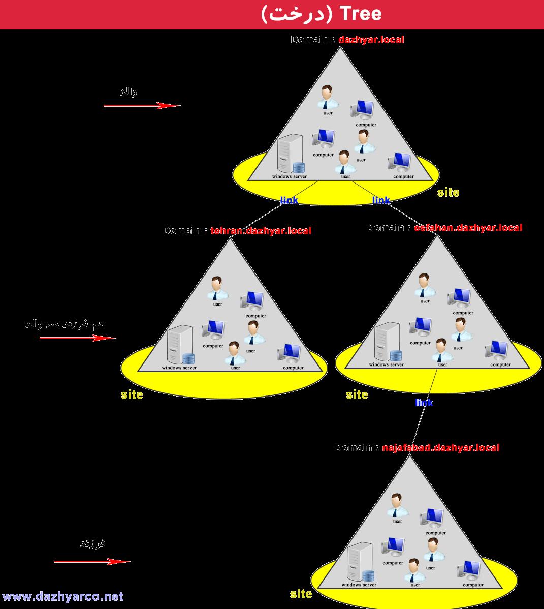 مفاهیم اکتیو دایرکتوری | Tree یا درخت